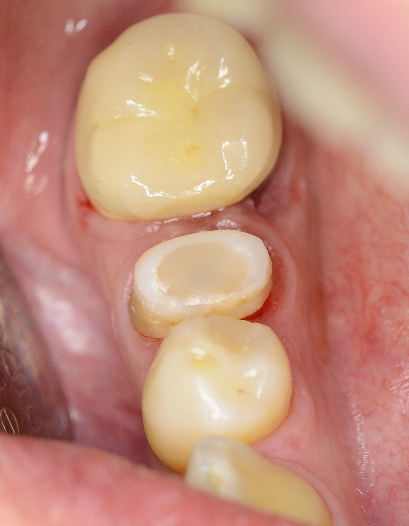 portfolio_dental_clinical_1410x1810